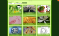 Biotechnology Website